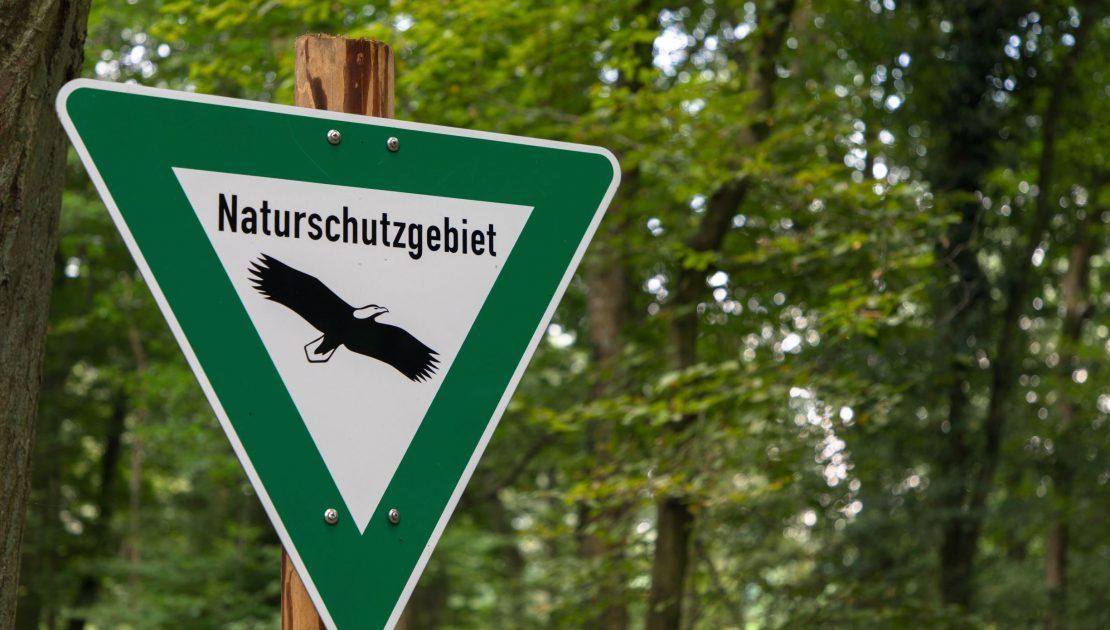 Naturschutzgebiet_ Forstgut Falkenstein Forst