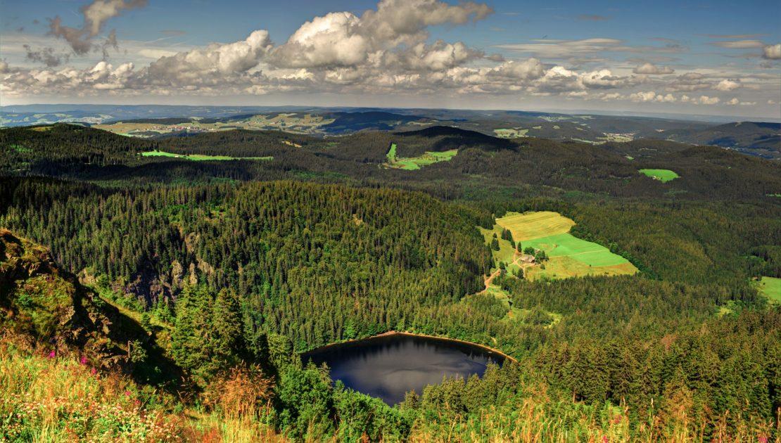 Prachtvolle-Landschaft_Schwarzwald